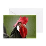Rooster 1 Greeting Cards (Pk of 20)