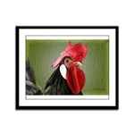 Rooster 1 Framed Panel Print