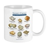 Shell I.D. Guide Mug