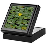 Keepsake Box - Lilly Pad