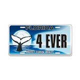 Aluminum License Plate (Whales)