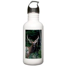 Elk colorado Sports Water Bottle