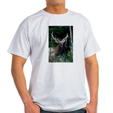 Elk colorado T-Shirt