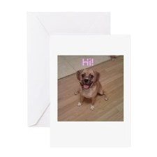 Cute Adorable puggles Greeting Card