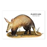 Aardvark Postcards (Package of 8)