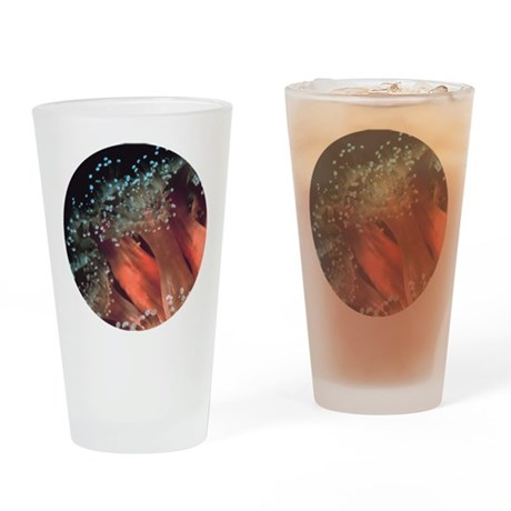 Strawberry Anemone Drinking Glass