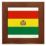 Bolivia Framed Tile