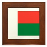Madagascar Framed Tile