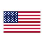 United States of America 38.5 x 24.5 Wall Peel