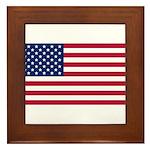 United States of America Framed Tile