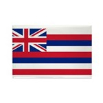 Hawaii Rectangle Magnet (100 pack)