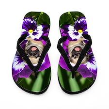 Pug in Pansies Flip Flops