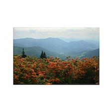Roan Mountain Rectangle Magnet