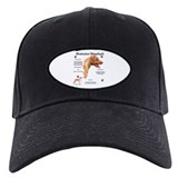 Ridge 1 Baseball Hat