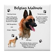 Malinois 1 Tile Coaster