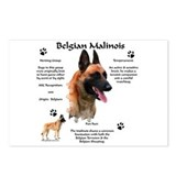 Malinois 1 Postcards (Package of 8)
