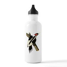 Ivory-Billed Woodpecker Water Bottle