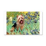 Irises - Aussie Terrier Car Magnet 20 x 12