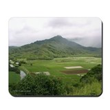 Hanalei Valley - Mousepad