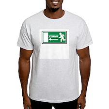 Icelandic Exit Ash Grey T-Shirt