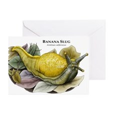 Banana Slug Greeting Cards (Pk of 20)
