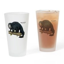 Binturong Drinking Glass