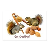 Squirrels Get Cracking Postcards (Package of 8)