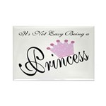 Party Princess Rectangle Magnet (100 pack)
