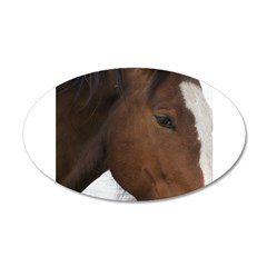 pRANCER 38.5 x 24.5 Oval Wall Peel