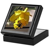 Bumblebee and Daffodil Keepsake Box