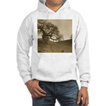 Sepia Tree Hooded Sweatshirt