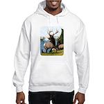 Elk Wapiti Hooded Sweatshirt