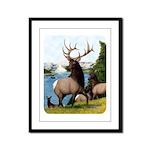 Elk Wapiti Framed Panel Print