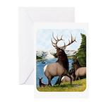 Elk Wapiti Greeting Cards (Pk of 10)