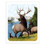 Elk Wapiti Small Poster