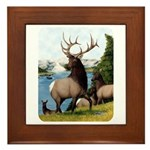 Elk Wapiti Framed Tile