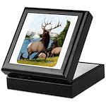 Elk Wapiti Keepsake Box