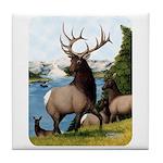 Elk Wapiti Tile Coaster
