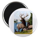 """Elk Wapiti 2.25"""" Magnet (100 pack)"""