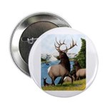 "Elk Wapiti 2.25"" Button (10 pack)"