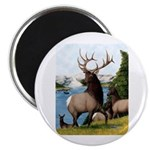 Elk Wapiti Magnet