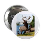 "Elk Wapiti 2.25"" Button"