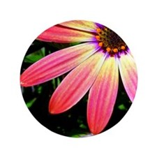 "Bright Daisy 3.5"" Button"
