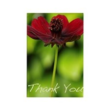 """Cosmos Flower"" Rectangle Magnet (10 pac"