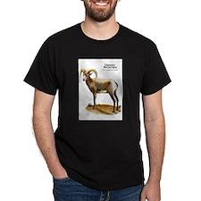 Desert Bighorn T-Shirt