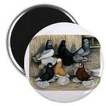 "Six Muffed Tumblers 2.25"" Magnet (10 pack)"