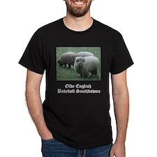Babydoll Southdown T-Shirt