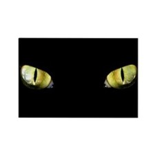 Cat Eyes Rectangle Magnet (100 pack)