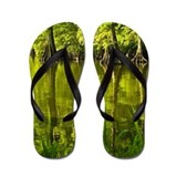 Cypress Tree Reflections Flip Flops