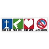 Anti Obama 2012 Car Sticker